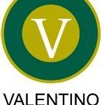 Valentino-Log-