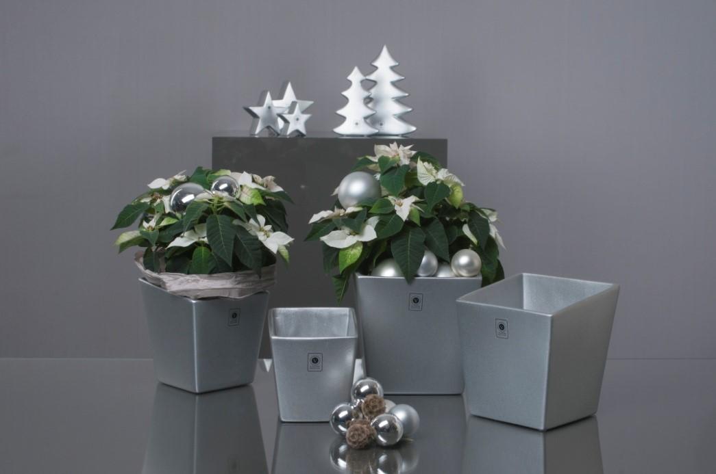 Vorbeikommen und weihnachten erleben - Weihnachtsdeko silber ...